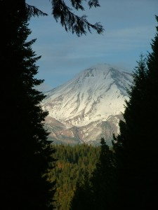 Mount Shasta On Today's Ride.