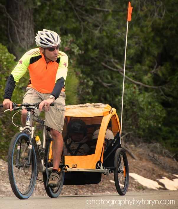 Burley Bee Bike Trailer Review | Cycling-Review com